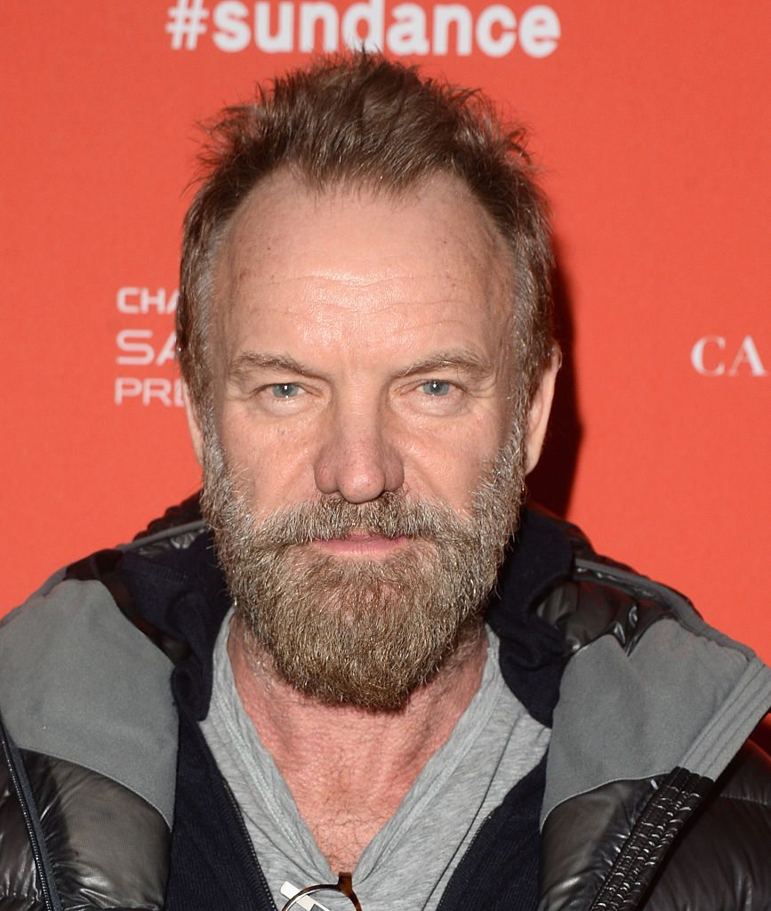 Sting - Royalty Income /  Matt Winkelmeyer/[Getty Images