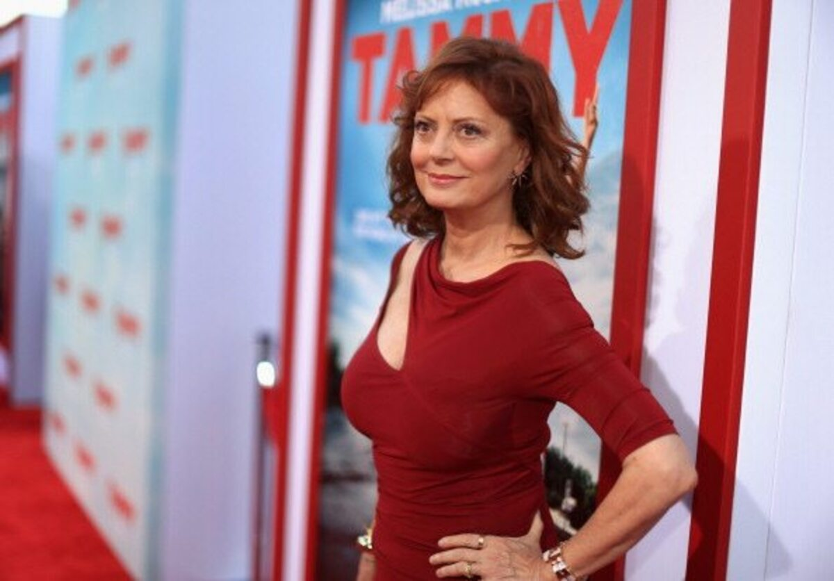 Image result for susan sarandon