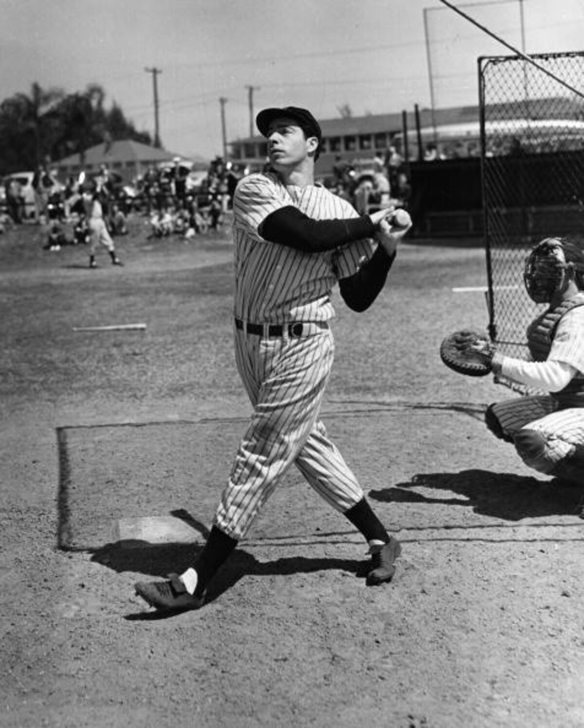 Joe Dimaggio Net Worth Celebrity Net Worth