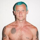 Flea Net Worth