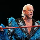 Ric Flair Net Worth