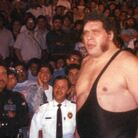 Andre the Giant Net Worth