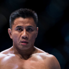 Cung Le Net Worth