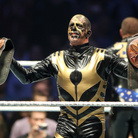 Goldust Net Worth