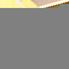 O'Shea Jackson Jr Net Worth