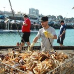 Crab Fisherman Salary