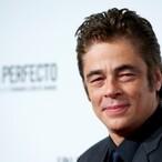 Benicio del Toro Net Worth