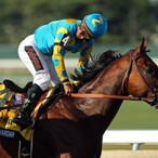 American Pharoah's Owners Are Making A Very Risky Multi-Million Dollar Gamble With Their Golden Goose