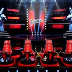 How Much Do The Judges On The Voice Get Paid?