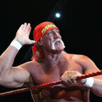 Hulk Hogan Finally Reaches Settlement Worth Millions With Gawker