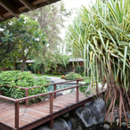 Rent Mick Jagger's West Indies Retreat For $16,500/Week