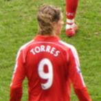 Fernando Torres Net Worth