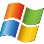 Microsoft Net Worth