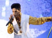 Prince's Alleged Love Child May Stand to Inherit His Entire Fortune