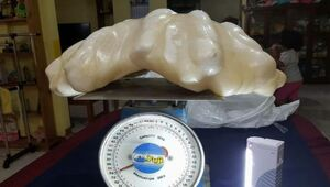 Thumbnail for Fisherman Finds Giant Pearl, Hides Under His Bed For 10 Years… Turns Out It's Worth $100 Million