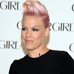 Pink Net Worth