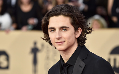 Timothée Chalamet Net Worth