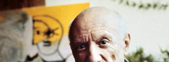 Pablo Picasso Net Worth