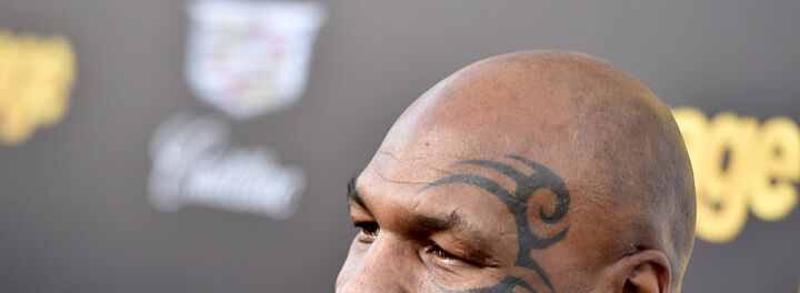 Mike Tyson Is Building A 40-Acre Marijuana Ranch/Resort In California