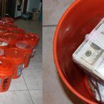Miami Brother And Sister Busted With Record-Breaking $24 Million Drug Cash Hidden In Walls