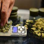 California Marijuana Market Could Grow To $6.5 Billion By 2020