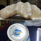 Fisherman Finds Giant Pearl, Hides Under His Bed For 10 Years… Turns Out It's Worth $100 Million