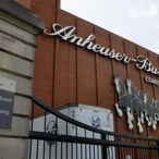 Anheuser-Busch Sets Its Sights On Buying Coca-Cola