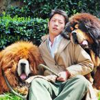 Meet The World's Most Expensive Dogs