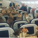 Saudi Prince Buys 80 Seats On Plane For Falcons