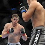 Nate Marquardt Net Worth
