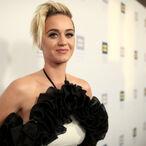 Katy Perry's Bid To Buy Religious Retreat For Catholic Priests Falls Through