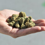 Canadian Weed Legalization Has Made A Number Of Entrepreneurs Millionaires And Billionaires