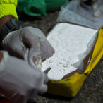 $77 Million Worth Of Cocaine Seized By US Authorities In Port Of New York/Newark's Biggest Bust In 25 Years