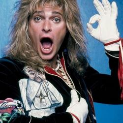 David Lee Roth Net Worth