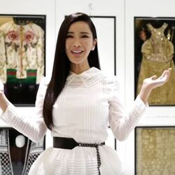Jamie Chua Net Worth