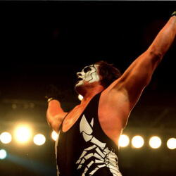 Sting (Wrestler) Net Worth
