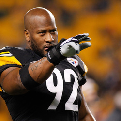 James Harrison Net Worth