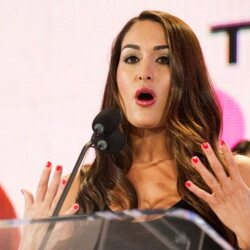 Nikki Bella Net Worth
