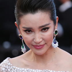 Li Bingbing Net Worth
