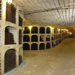The 10 Biggest Wine Collections in the World