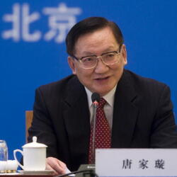 Tang Jiaxuan Net Worth