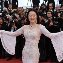 Gong Li Net Worth