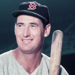 Ted Williams Net Worth