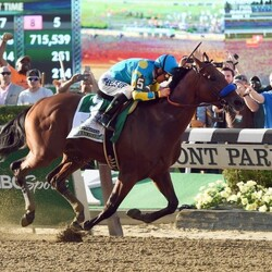 In 2013, American Pharoah's Owner Tried To Sell Him For $300k. Today, His Stud Rights Are Worth $30+ Million.