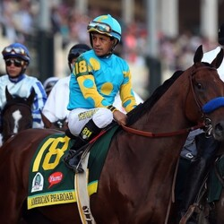 American Pharoah Is Going To Make His Owners A Huge Fortune Off The Racetrack (In The Bedroom)