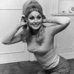 Sharon Tate Net Worth