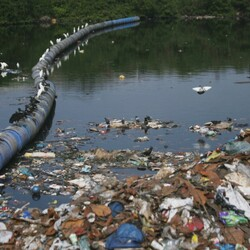 Rio de Janeiro Is Hosting The Olympics Next Year... But Did You Know The Water Is Toxic Enough To Kill The Athletes?
