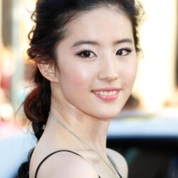 Liu Yifei Net Worth
