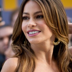 How Much Has Sofia Vergara Made From Her Major Film Roles