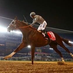 California Chrome Races Into The Record Books With A Big Win In Dubai